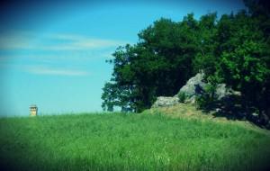 spugnone e rocca