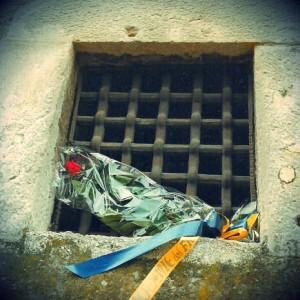 fiori carcere