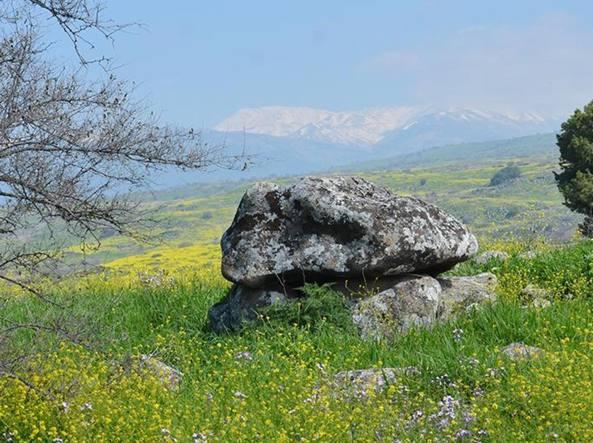 Il dolmen gigante scoperto nei campi del kibbutz Shamir, in alta Galilea