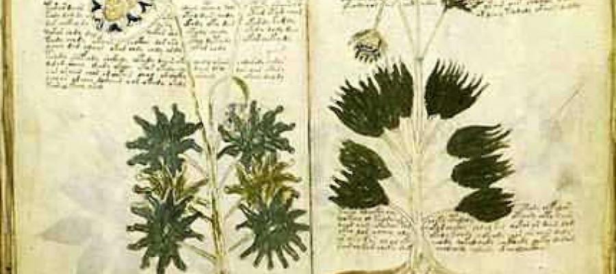 """Il #mistero dell'#indecifrabile #manoscritto di #Voynich. """"E' stato scritto da un italiano"""""""