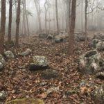 137 #misteriose #giare dei #morti #emergono da remote #foreste montane del #Laos