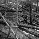 #30 #giugno #1908 – cosa accadde quel giorno a #Tunguska?